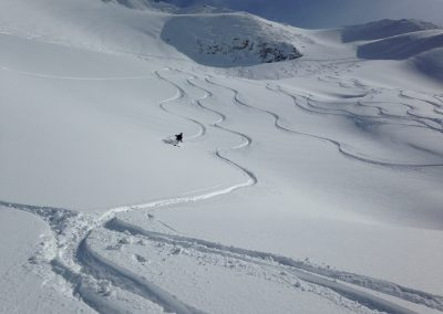 Ski Touring Avalanche Course